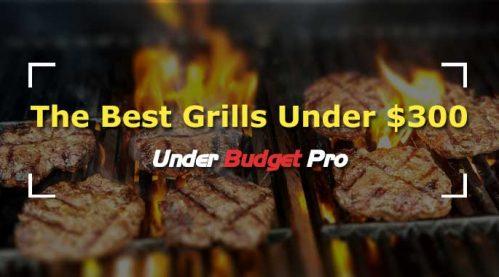 5 best grills under $300