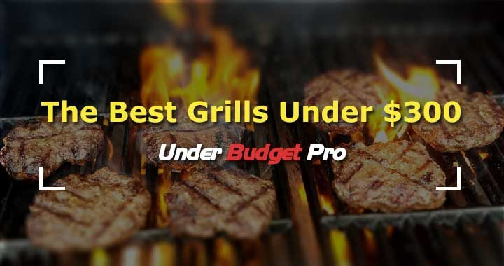 best gas grill for under $300